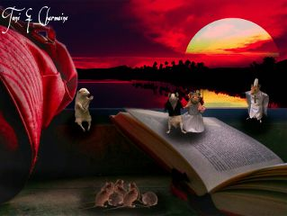 edit sunset mice pets & animals photography