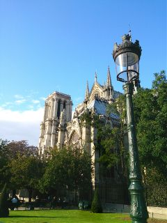 catedral paris emotions photography quotes & sayings