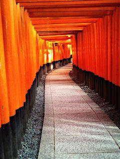 japan fushimi-inari temple