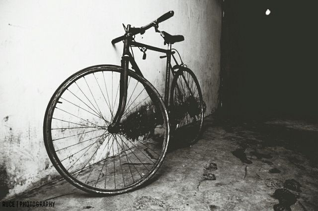 photo of a bike