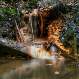 photography nature forest water autumn