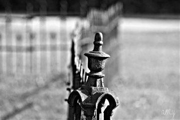 black & white photography fence