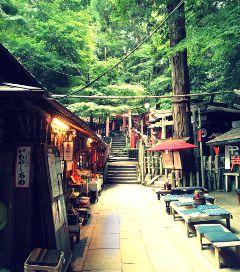 kyoto japan fushimi-inari