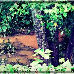 summer photography nature floods