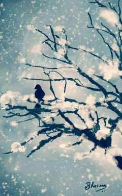drawing winter snowfall nature