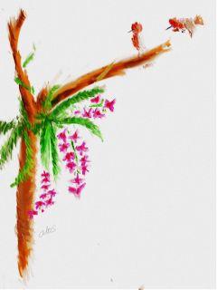 color splash flower nature pets & animals pencil art