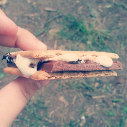 smores yum bon fire food summer