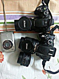 canon nikon camera photography hobby